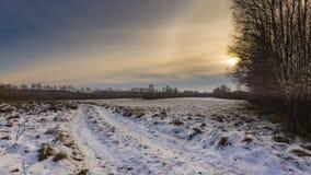 Zim łąki z śniegiem obrazy royalty free