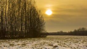 Zim łąki z śniegiem obraz stock
