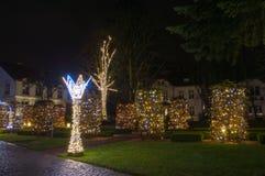 Zim bożych narodzeń iluminacja przy nocą w Oliwa parku w Gdańskim Fotografia Royalty Free