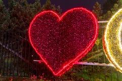 Zim bożych narodzeń iluminacja przy nocą w Oliwa parku w Gdańskim Obrazy Royalty Free
