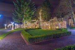 Zim bożych narodzeń iluminacja przy nocą w Oliwa parku w Gdańskim Zdjęcie Royalty Free