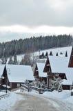 Zim jedlinowych drzew śnieg zakrywający tło Zdjęcie Royalty Free