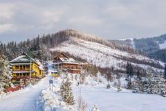 Zim Karpackie góry Zdjęcie Stock
