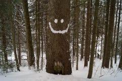 Zim przygody uśmiech carpathians Ukraina zdjęcia royalty free