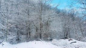 Zim sceny zdjęcia royalty free