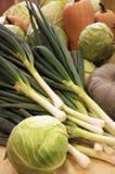 Zim warzywa od ogródu Obrazy Royalty Free