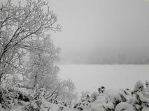Zima, śnieżna scena, Marznący jezioro, Sławny sceniczny teren, Morskie Oko, Polska zdjęcie stock