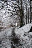 zima ścieżki zdjęcia stock
