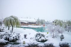 Zima, śnieg, drzewo marznący basen zdjęcie stock