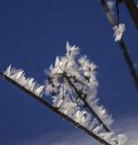 Zima, śnieg, oszronieje Lodowe igły Obraz Royalty Free