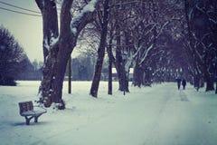Zima śniegu krajobraz, aleja z ławką i drzewa, Obrazy Stock
