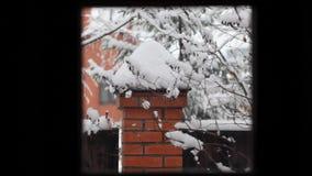 Zima śniegu ogródu hd materiał filmowy zdjęcie wideo