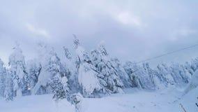 Zima obrazy stock