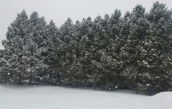 Zima obraz stock