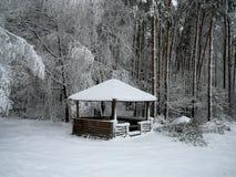 Zima fotografia stock