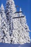 Zima Zdjęcie Stock