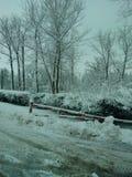Zima Zdjęcia Royalty Free
