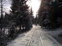 Zima ilustracji