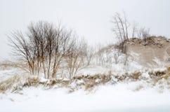 Zima bielu krajobraz zdjęcie stock