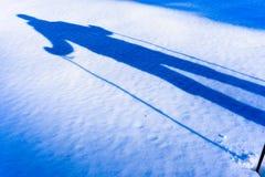 Zima chodzi na śniegu zdjęcie royalty free