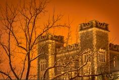 Zima czas Castel w śniegu fotografia royalty free