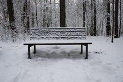 Zima czas, parkowa ławka zakrywająca w śniegu obraz royalty free