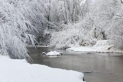 zima drewna Zdjęcia Royalty Free