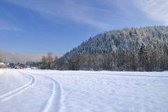 zima drogowa Zdjęcie Stock
