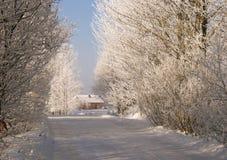 zima drogowa Fotografia Stock