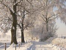 zima drogowa Zdjęcie Royalty Free