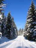 zima drogowa Obraz Stock