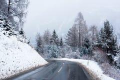 Zima Drogowy Lodowaty las Zakrywający Śnieżny Sceniczny Halny Austria Zdjęcie Stock