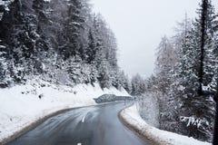 Zima Drogowy Lodowaty las Zakrywający Śnieżny Sceniczny Halny Austria Zdjęcia Royalty Free