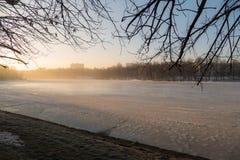 Zima drzewo w ranku i jezioro Zdjęcia Stock