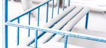 Zima dzień w ogródzie Obraz Royalty Free