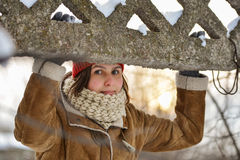 Zima dzień Obrazy Royalty Free