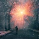 Zima dzień Obraz Stock
