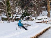 Zima dzień blisko jeziora Obraz Royalty Free