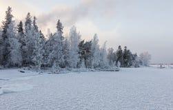 Zima dzień obok jeziora Obrazy Royalty Free