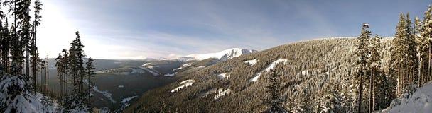 Zima dzień w górach fotografia royalty free