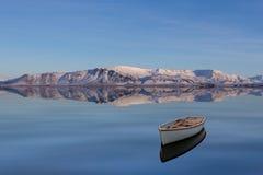 Zima głąbik Zdjęcie Royalty Free