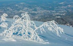 Zima halny śnieżny krajobraz zdjęcie stock