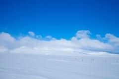 Zima horyzont zdjęcie royalty free