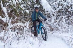 Zima Jechać na rowerze w lesie Obrazy Royalty Free