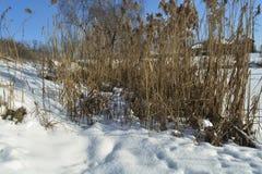 Zima jeziora miasto Zdjęcia Royalty Free