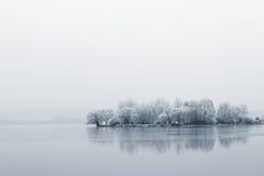 Zima jezioro Zdjęcia Royalty Free