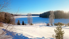 Zima jezioro Obrazy Royalty Free