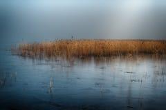 Zima jezioro w mgle Zdjęcie Stock