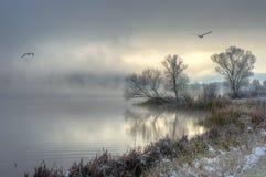 Zima jezioro z latającymi ptakami Fotografia Royalty Free