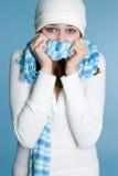 zima kobieta Obraz Stock